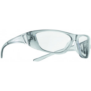 MSA Metropol 10104669 veiligheidsbril